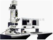 Leica SD AF快速转盘激光共聚焦显微镜