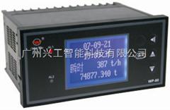 WP-LCT802-72-FAG-HL防盗流量积算仪