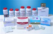 乳酸杆菌选择性琼脂