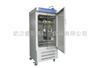 HPX-300BSH-III恒溫恒濕箱