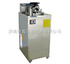 博訊高壓蒸汽滅菌器YXQ-LS-100A