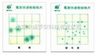 霉菌、酵母菌测试片 24片/包
