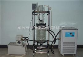 S212-150L双层玻璃反应釜