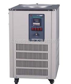DFY-10L低温恒温反应浴