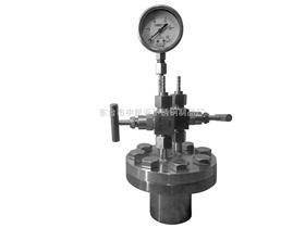 25ml,50ml,100ml,200ml,250ml高压反应釜/高压消解罐
