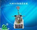 SLM250高温反应釜