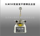 SLM250实验室不锈钢反应釜