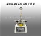 SLM100实验室加氢反应釜