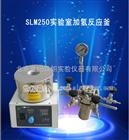 SLM250实验室加氢反应釜