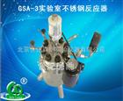 GSA-3实验室不锈钢反应器