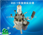 GSA-1实验室反应器