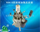 GSA-5实验室加氢反应釜