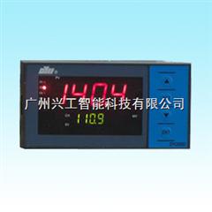 DY21B02智能控制数显仪DY21B02