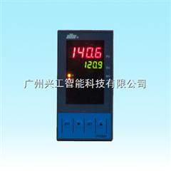 DY28B26P智能控制数显仪DY28B26P