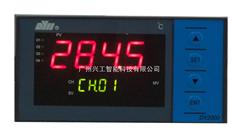 DY21D0108智能多路巡检仪