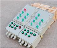 BXD防爆动力配电箱,BXD51防爆配电箱 防爆动力配电箱