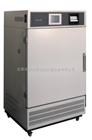 YW-150GS药品稳定性试验箱生产厂家