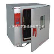250度新型升级电热鼓风干燥箱