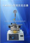 SLM500小型高压反应器