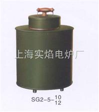 SG2-5-12坩埚电阻炉