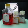 CS2005YDMEM/Ham's F-12(含L-谷氨酸盐)