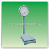 TTZ-100沧州度盘秤,100公斤指针度盘秤TTZ-100