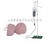 KAB/G1高级婴儿头皮静脉注射训练模型