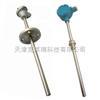 天津熱電阻,鎧裝熱電阻,熱電阻價格現貨