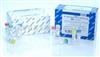 12145QIAGEN Plasmid Midi Kit (100)