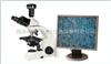 厂家直销澳浦UB100i系列生物显微镜