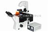 IM200FL荧光显微镜-北京同舟同德