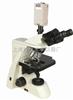 生物显微镜XSP-10CE|倒置生物显微镜|生物荧光显微镜|生物电子显微镜-绘统光学