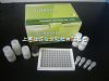 HCB公司 ELISA  kit