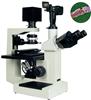 倒置生物显微镜XSP-18CE|倒置生物显微镜原理-绘统光学仪器厂