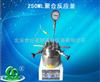 250ML聚合反应釜