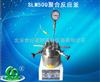 SLM500聚合反应釜