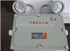 防爆应急灯、CBBJ-2*20防爆应急灯、防爆应急灯