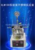 SLM100实验室不锈钢反应釜