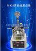 SLM25实验室反应器