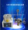 SLM10实验室加氢反应器