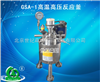 GSA-1高温高压反应釜