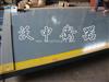 SCS出口型电子地磅,100吨出口式汽车衡