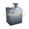 LS-B100L-Ⅱ高压蒸汽灭菌器/蒸汽全自动灭菌器LS-B100L-Ⅱ
