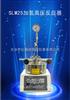 SLM25加氢高压反应器